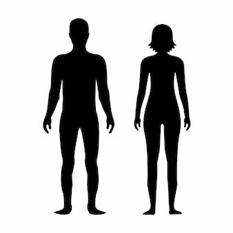 Modelo de silhueta de corpo masculino e feminino. ícone de silhuetas de corpo para medicina.