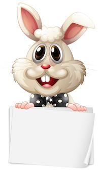 Modelo de sinal em branco com coelho feliz no fundo branco
