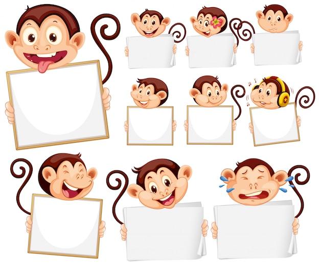 Modelo de sinal em branco com macacos bonitos no fundo branco