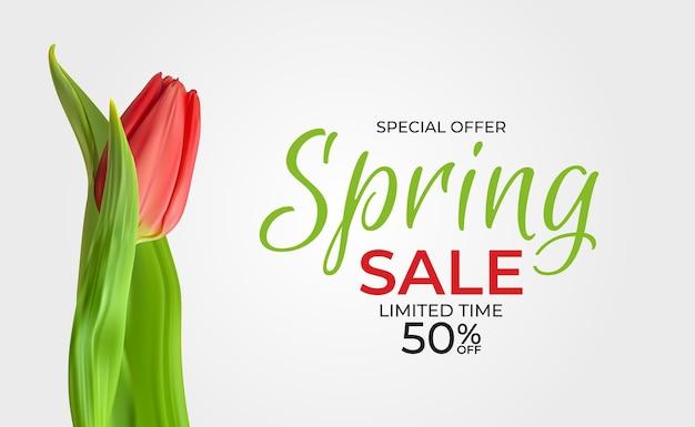 Modelo de venda de primavera com flor de tulipa realista.