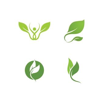 Modelo de vetor fresco de logotipo de planta verde de folha