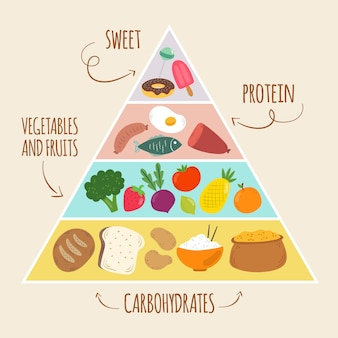 Modelo do conceito de pirâmide alimentar