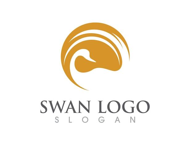 Modelo do logotipo swan