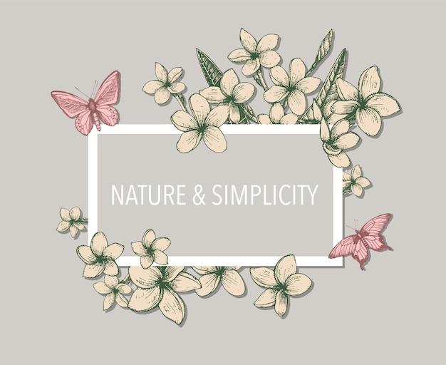 Modelo floral tropical com cachos de mão desenhada, flores e folhas de plumeria e borboletas.