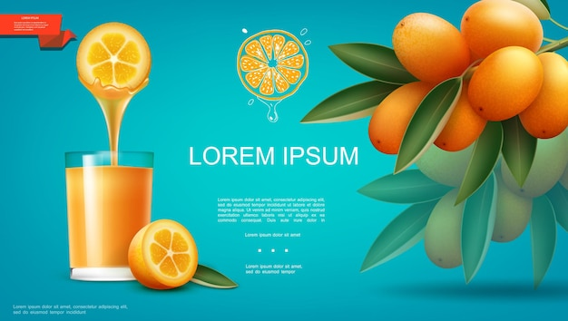 Modelo realista de suco de fruta natural com um copo cheio de bebida saudável e ilustração de um ramo de frutas maduras de kumquat