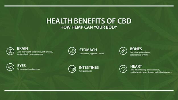 Modelo verde com infográfico de benefícios para a saúde do cbd de cannabis, cânhamo, maconha