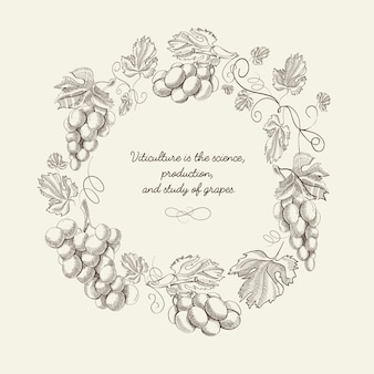 Modelo vintage abstrato coroa natural com cachos de uvas e citação em estilo de desenho