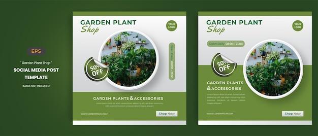 Modelos de postagem de mídia social para loja de plantas