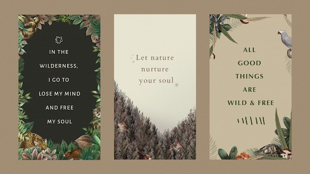 Modelos editáveis de citações motivacionais ilustração vetorial da vida selvagem