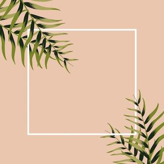 Molde abstrato do projeto. folhas verdes. cartaz de fundo botânico vintage. palmeiras, folhas exóticas.