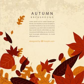 Molde do fundo do outono com folhas
