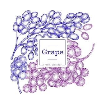 Molde do projeto da uva. mão-extraídas ilustração vetorial de uva baga. banner botânico retrô de estilo gravado.