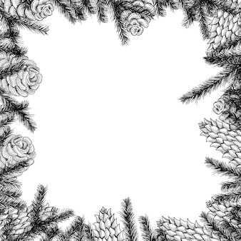 Moldura de cones e galhos de árvores de pinheiro e abeto