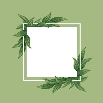 Moldura de folhas verdes