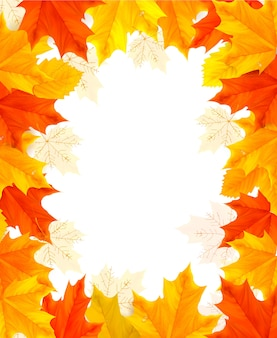 Moldura feita de folhas coloridas