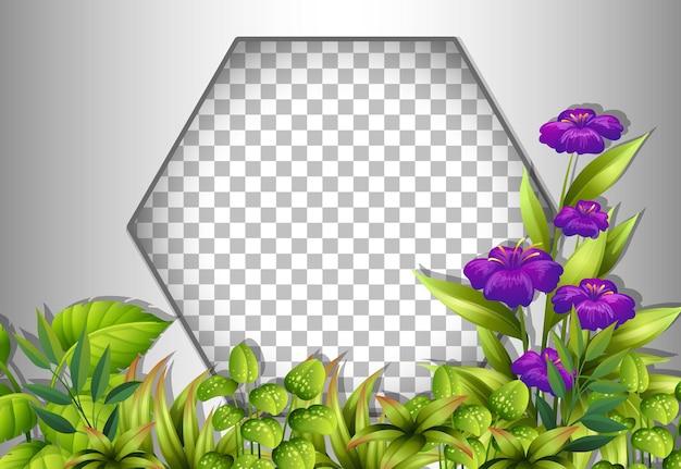 Moldura hexagonal transparente com modelo de flores e folhas roxas