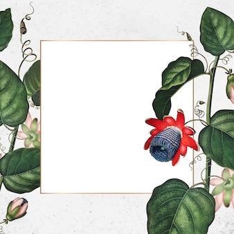 Moldura quadrada da flor da paixão alada