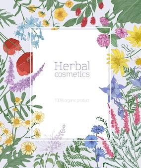 Moldura retangular decorada com flores desabrochando do prado selvagem e plantas herbáceas em flor. borda ou fundo floral decorativo elegante.