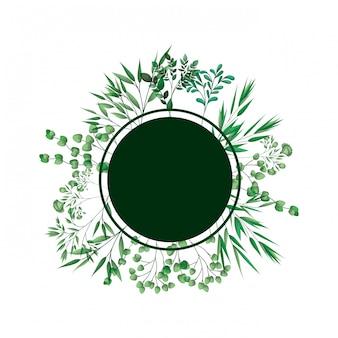 Moldura verde com ramos e folhas
