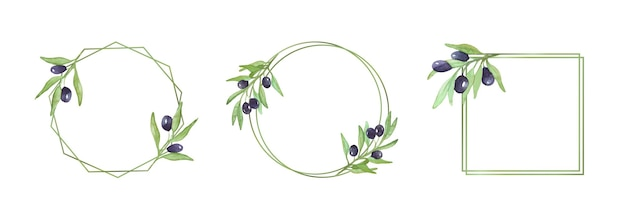Molduras com ramos de oliveira aquarela de ramos de oliveira