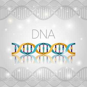 Molécula de dna na estrutura de linha