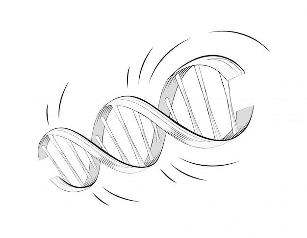 Molécula de hélice do dna realista de vetor com genes