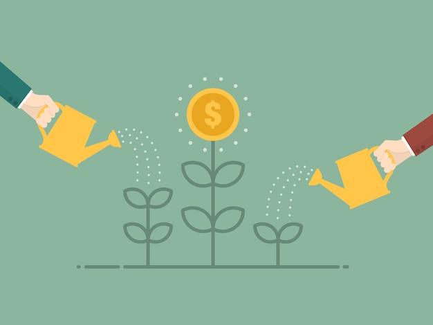 Molhar a planta moeda