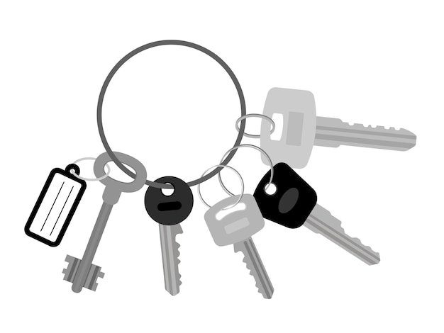 Molho de chaves planas