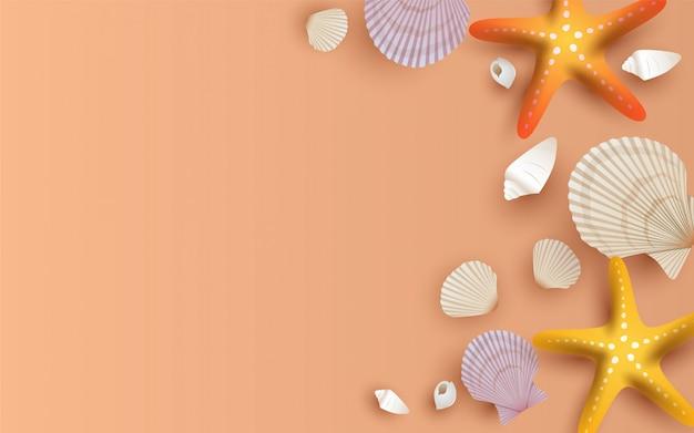 Moluscos bonitos no fundo da areia da praia