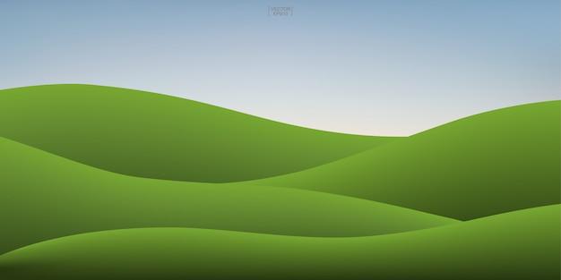 Monte da grama verde e fundo do céu do por do sol.