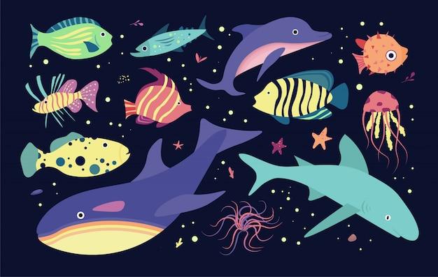 Moradores do mundo subaquático do mar. peixes e medusa, golfinho, assassino, tubarão-baleia.