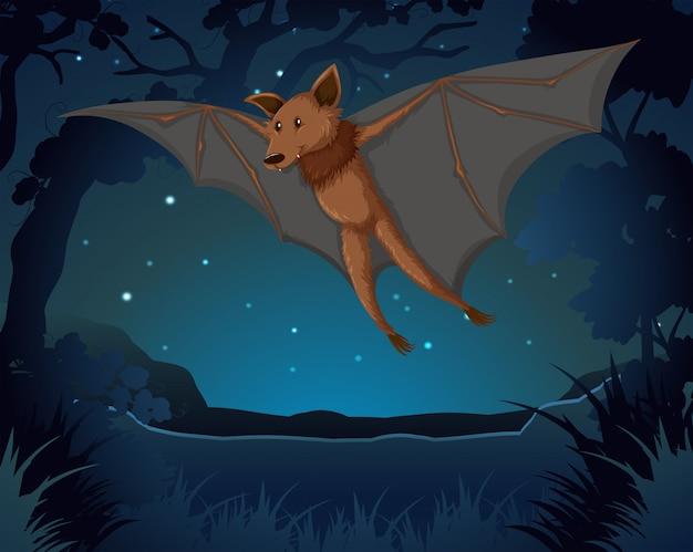 Morcego voando no escuro