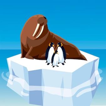 Morsa e pinguins juntos em um iceberg derretido na ilustração do pólo norte