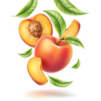 Movimento de redemoinho de fatia de folha de nectarina de vetor de pêssego