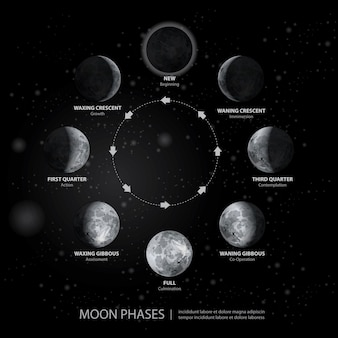 Movimentos da ilustração vetorial realista fases da lua