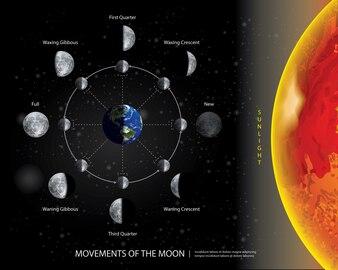 Movimentos da Lua 8 Ilustração vetorial realista fases lunares