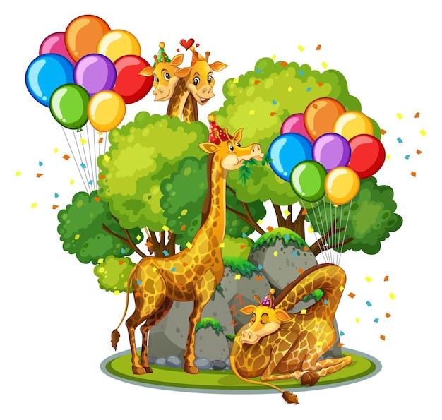 Muitas girafas no tema da festa no fundo da floresta da natureza isolado