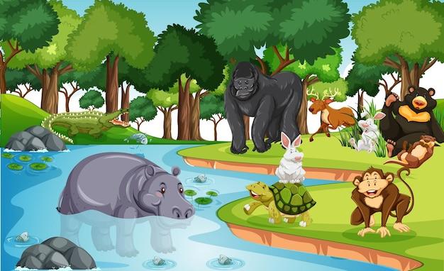 Muitos animais diferentes na cena da floresta