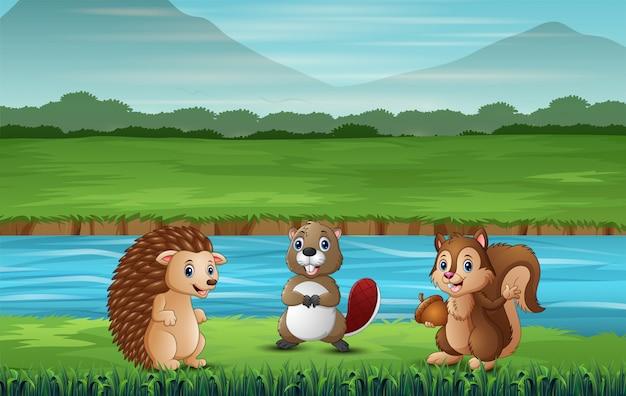 Muitos animais em pé junto ao rio