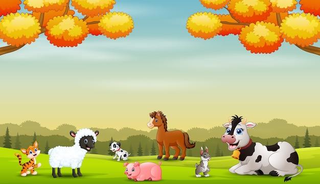 Muitos animais fazem fazenda desfrutando ao ar livre no outono