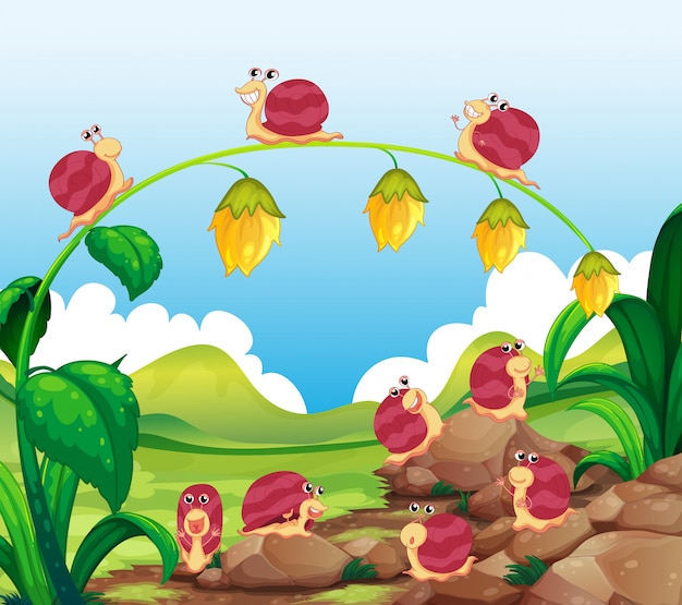 Muitos, caracóis, rastejar, em, jardim