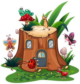 Muitos, insetos, ao redor, a, toco, árvore