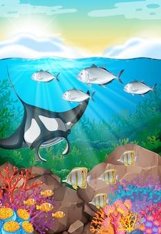 Muitos peixes nadando sob o oceano