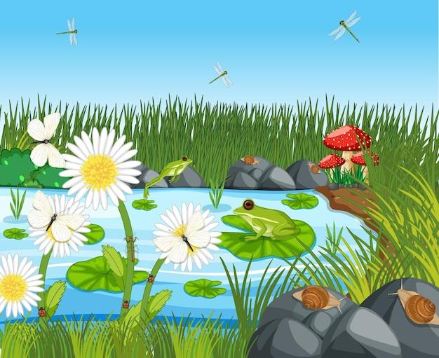 Muitos sapos verdes e libélulas na cena do lago