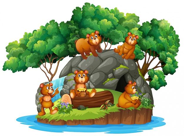 Muitos ursos na ilha