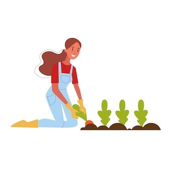 Mulher agricultora colhendo cenoura. colheita fresca orgânica