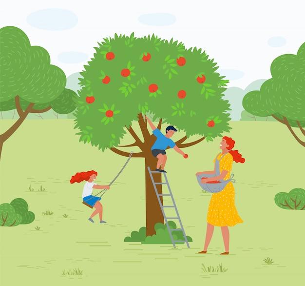 Mulher de árvore de maçã colhendo frutas garoto jogando vetor