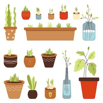Mulher plantando plantas e ervas em vasos ilustração vetorial plana isolada