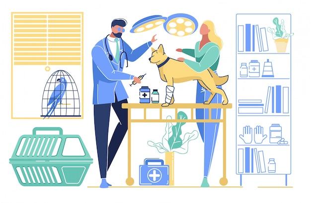 Mulher, trazer, cão, com, perna quebrada, veterinário, clínica