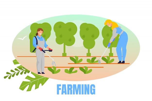 Mulheres jardineiras plantando e cuidando de plantas